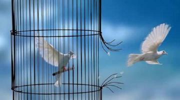«Η ελευθερία της σκέψης είναι τροφή της ψυχής»