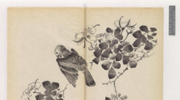 Το πρώτο και πιο όμορφο έγχρωμο βιβλίο του κόσμου είναι πλέον διαθέσιμο για (ψηφιακό) ξεφύλλισμα