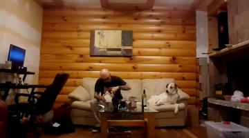 Σκύλος «τρώει» με τα μάτια το φαγητό του αφεντικού του