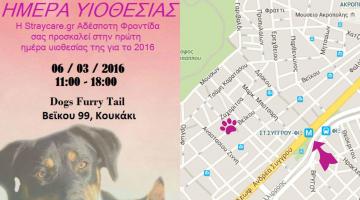 Straycare.gr: Ημέρα Υιοθεσίας 2016