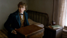 'Fantastic Beasts' Sees Powerful Chinese Opening Day