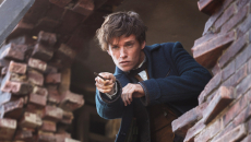 'Fantastic Beasts 2' First Cast Photo, Title Revealed