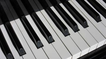 Παγκόσμιο ρεκόρ για είκοσι μαθητές που έπαιξαν ταυτόχρονα στο ίδιο πιάνο
