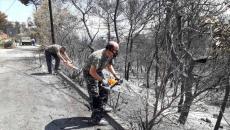 Καθοριστική η συμβολή του στρατού στις φονικές πυρκαγιές