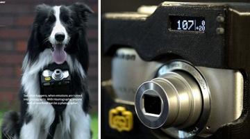 Φωτογραφική μηχανή για… σκύλους