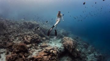 Η πρώτη στον κόσμο υποθαλάσσια έκθεση φωτογραφίας με μια ανάσα