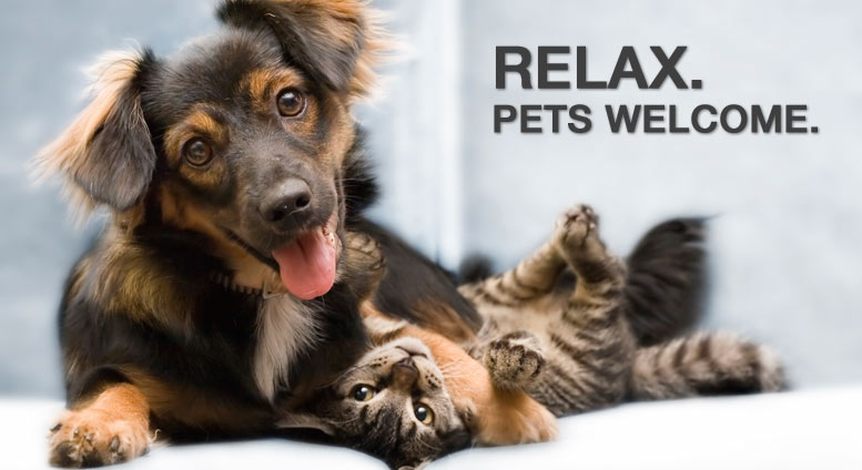 Image result for PET FRIENDLY