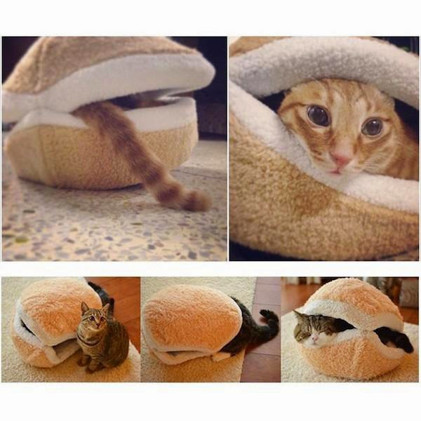 unnecessary-pet-products-cat-sandwich