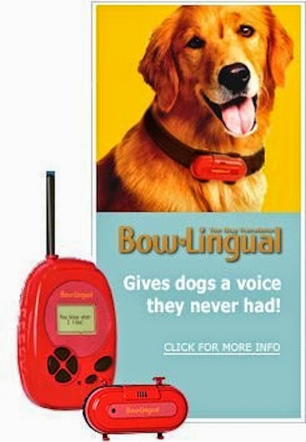 unnecessary-pet-products-dog-voice