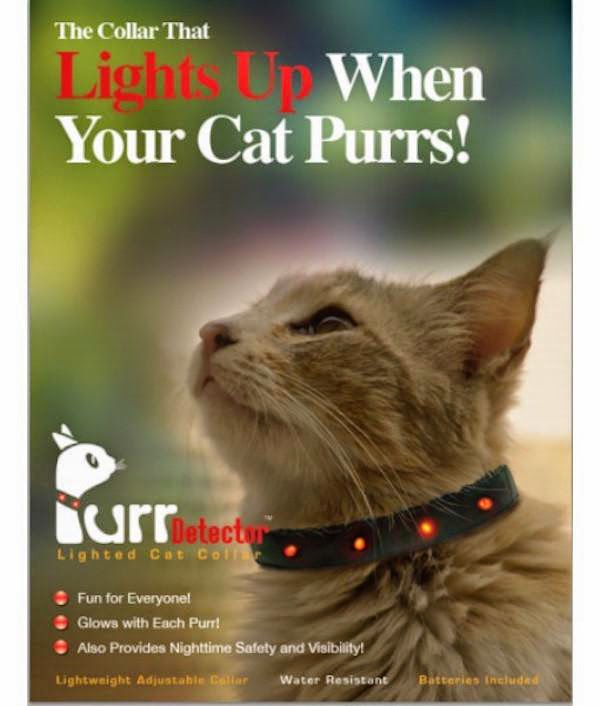 unnecessary-pet-products-cat-purrs-lights