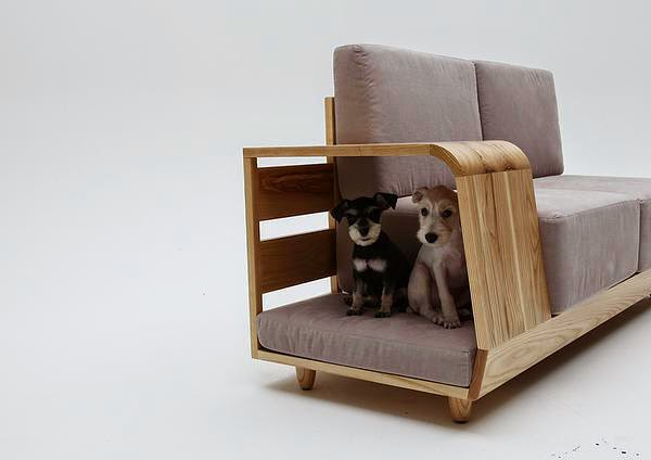 unnecessary-pet-products-dogcouch