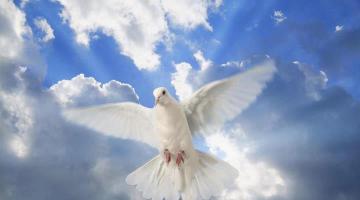 ΑΣΤΡΟ Αγάπη, ανεξικακία, πίστη, ελπίδα, υπομονή, μετάνοια, προσευχή