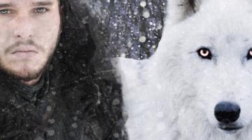 Ο ανταρόλυκος του Τζον Σνόου επιστρέφει στην τελευταία σεζόν του «Game of Thrones»