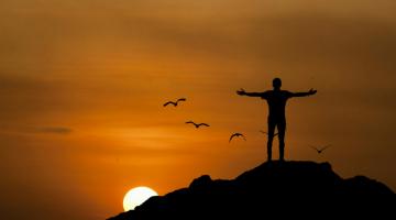 Ελευθερία δεν σημαίνει ασυδοσία και απουσία δομής