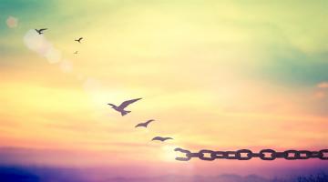 Η βαθύτερη επιθυμία μας είναι να έχουμε ελευθερία