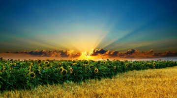 Καλημέρα… σήμερα και σύντομα