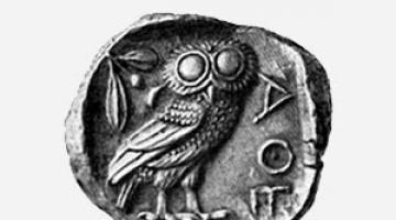 Κουκουβάγια, το ιερό πουλί της Θεάς Αθηνάς, σύμβολο σοφίας, σύνεσης, αλλά και σύμβολο της πόλης των Αθηνών!