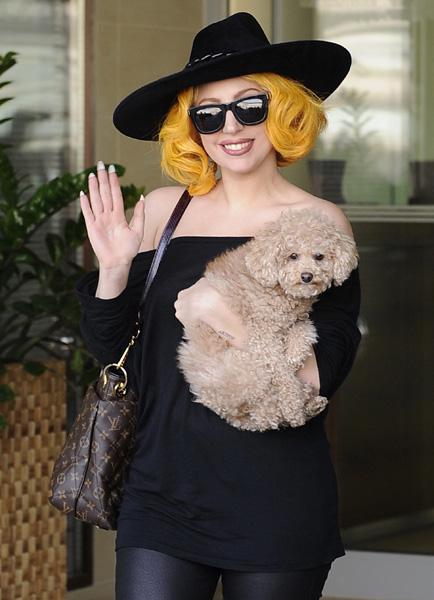 Lady Gaga in Vienna