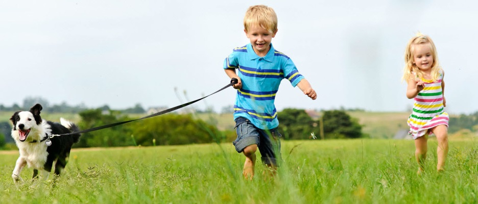 Black-And-Kletz-Allergy-Children-Running-With-Dog-Cropped-1200x400
