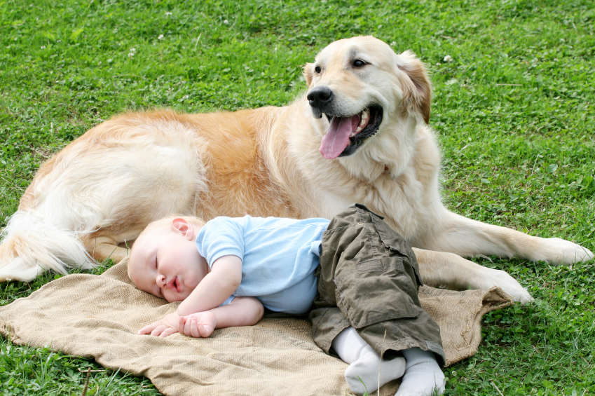 Healthy_Home_baby_sleeping_dog_iStock_000007032339Small_PK-Photos