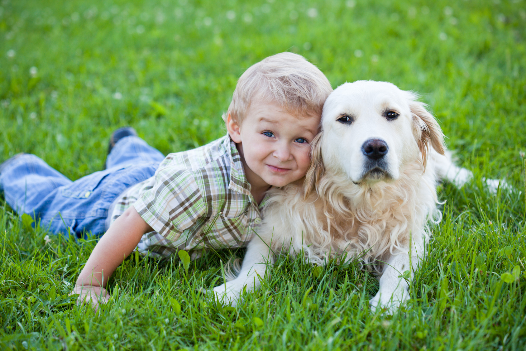 Boy with retriever outdoor