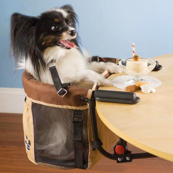 unnecessary-pet-products-dog-seat
