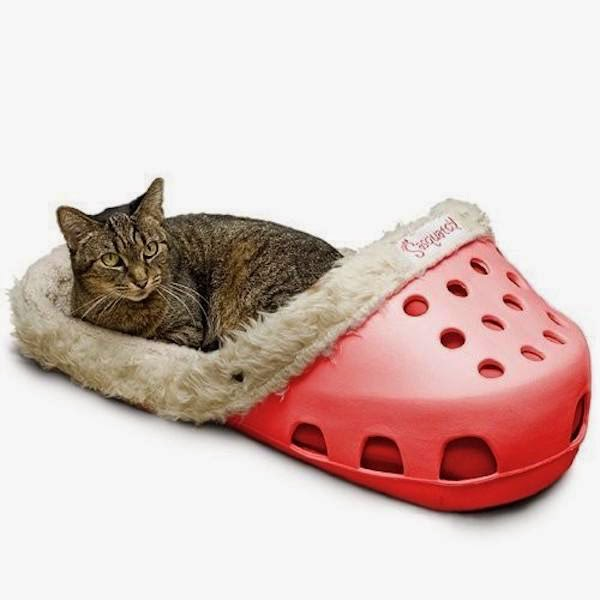 unnecessary-pet-products-shoe-bed