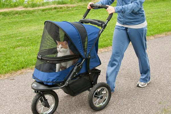 unnecessary-pet-products-cat-pushchair